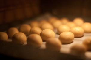 スノーボールクッキー、オーブンの写真素材 [FYI00092482]