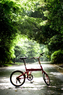 自転車と緑の素材 [FYI00092570]