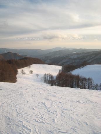 雪景色の写真素材 [FYI00092664]