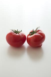トマトの素材 [FYI00092679]