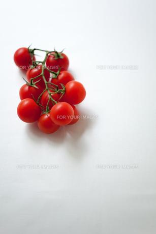 枝付きトマトの素材 [FYI00092683]