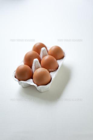 卵パックの素材 [FYI00092694]