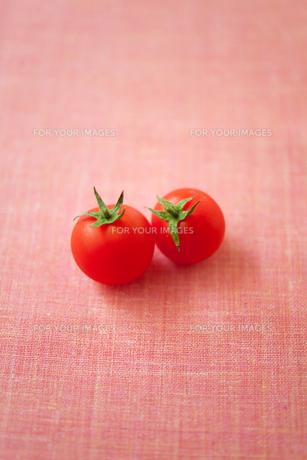 トマトの素材 [FYI00092753]