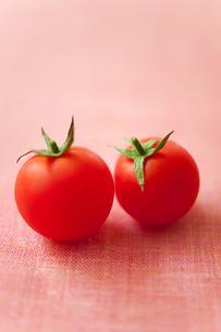 トマトの素材 [FYI00092764]