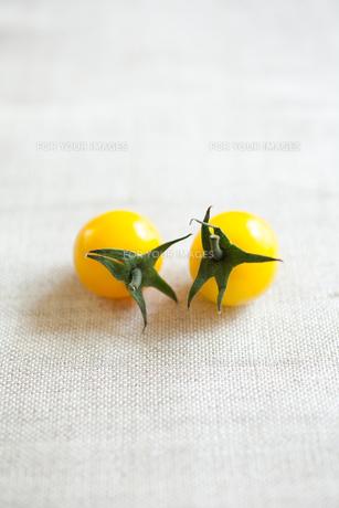 黄色いフルーツトマトの素材 [FYI00092872]