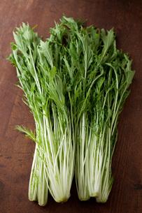 水菜の写真素材 [FYI00092954]