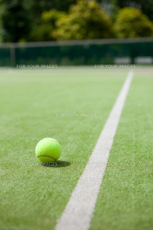 人工芝テニスコートの写真素材 [FYI00092983]