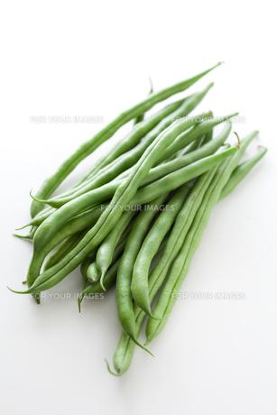 インゲン豆の素材 [FYI00093053]