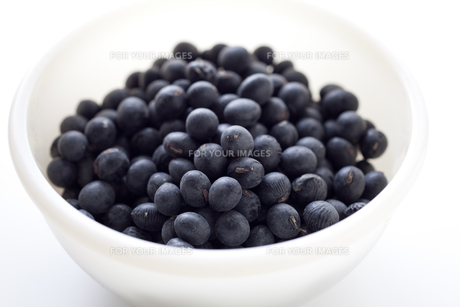 黒豆の素材 [FYI00093054]