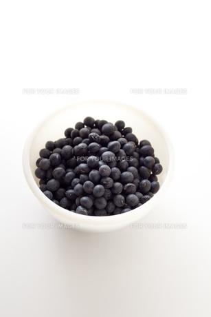 黒豆の素材 [FYI00093062]
