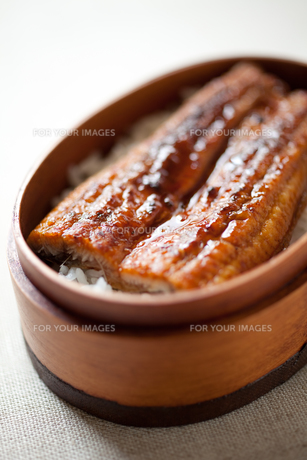 ウナギの蒲焼き弁当アップの素材 [FYI00093252]