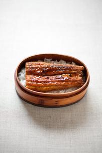 ウナギの蒲焼き弁当の写真素材 [FYI00093253]