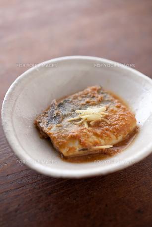 サバの味噌煮の素材 [FYI00093285]