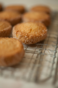 クッキーの写真素材 [FYI00093299]