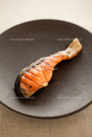 塩鮭の素材 [FYI00093374]
