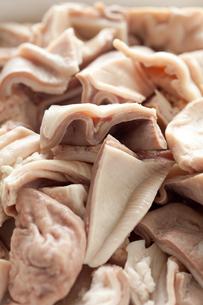 豚ガツ(胃)素材の素材 [FYI00093415]