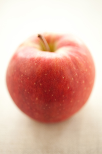 林檎の写真素材 [FYI00093419]