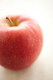 林檎の写真素材 [FYI00093449]