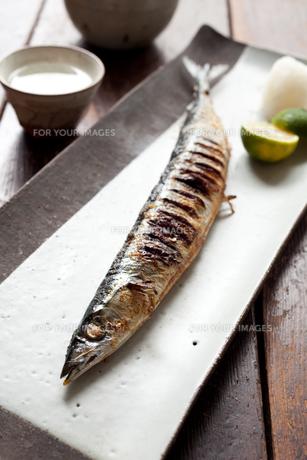 サンマの塩焼きと日本酒の素材 [FYI00093472]