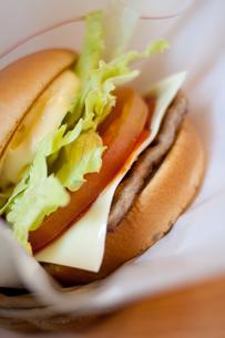 ハンバーガーの素材 [FYI00093668]
