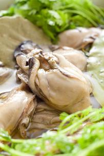 牡蠣のオリーブオイル漬けの素材 [FYI00093677]