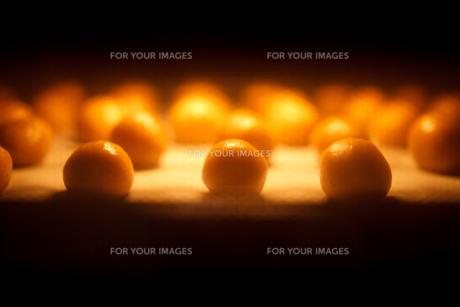 クッキーを焼くの素材 [FYI00093716]