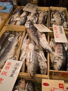 新巻鮭の素材 [FYI00093862]
