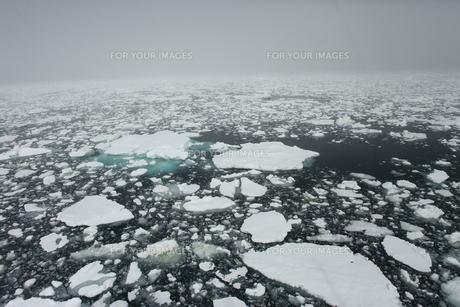 南極の流氷の素材 [FYI00093956]