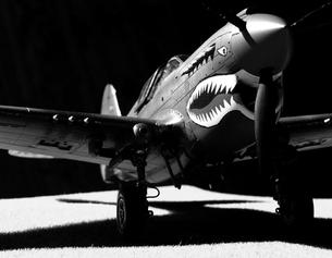 P-40E Warhawkの模型の写真素材 [FYI00094038]