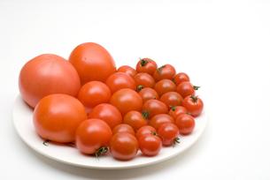 皿の上のトマトの写真素材 [FYI00094145]