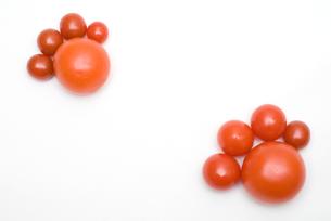 トマトの足の写真素材 [FYI00094163]