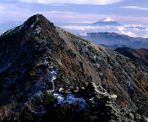 南アルプス八本歯ノ頭と富士の写真素材 [FYI00094381]