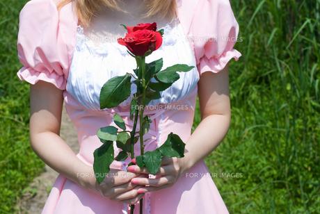 バラを持つメイドの写真素材 [FYI00094434]