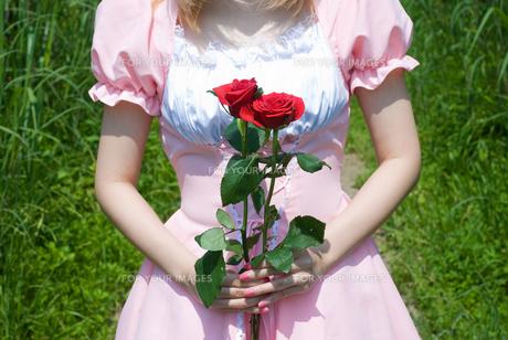 バラを持つメイドの写真素材 [FYI00094435]