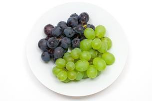 2種類のブドウの写真素材 [FYI00094539]