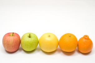並んだオレンジとりんごの写真素材 [FYI00094541]