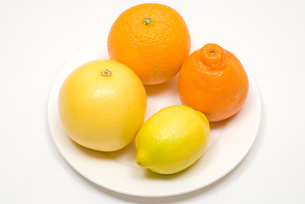 皿の上の柑橘類の写真素材 [FYI00094544]