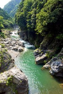 夏の鳩ノ巣渓谷の写真素材 [FYI00094714]