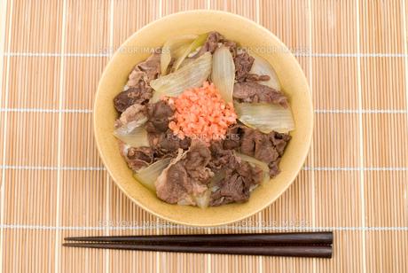 牛丼の写真素材 [FYI00095232]