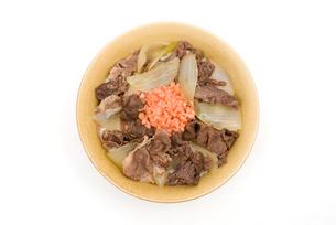 牛丼の写真素材 [FYI00095235]