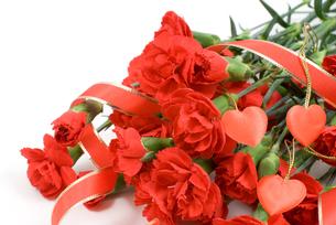 赤いカーネーションの花束の写真素材 [FYI00095589]