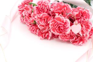 ピンクのカーネーションの花束の写真素材 [FYI00095600]