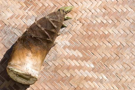 収穫したタケノコの素材 [FYI00095984]