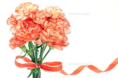 オレンジ色のカーネーションの花束の素材 [FYI00096415]