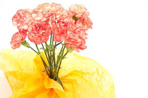 オレンジ色のカーネーションの花束の素材 [FYI00096448]