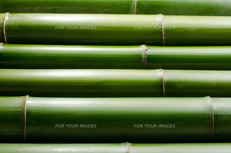 竹を並べた背景の素材 [FYI00096451]