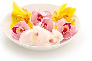 皿の上の三色のシンビジウムの花の写真素材 [FYI00096463]