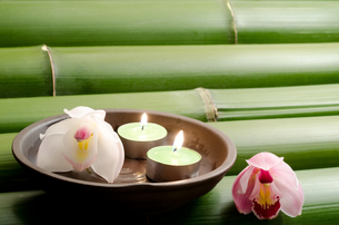 竹の上のティーキャンドルとシンビジウムの花の写真素材 [FYI00096464]