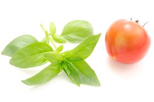 バジルとトマトの写真素材 [FYI00096512]