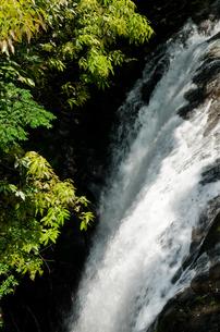 菊池渓谷の掛幕の滝の写真素材 [FYI00096527]